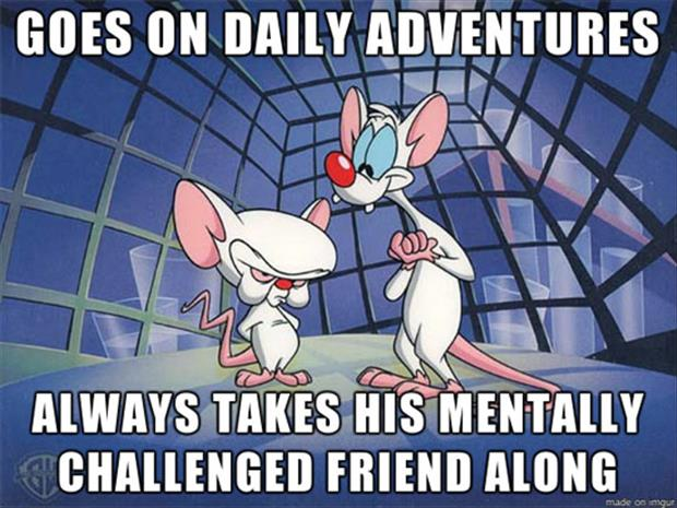 pinky and the brain funny