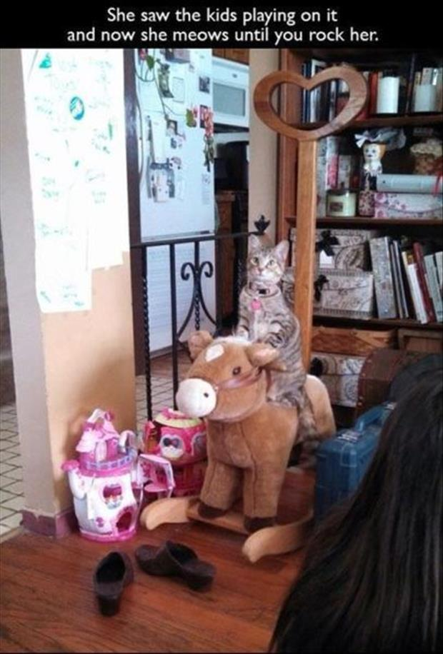 rocking horse for cat