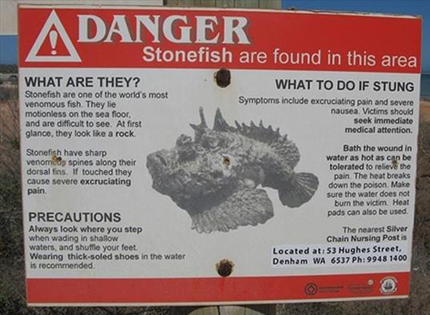 scary things in Australia (25)