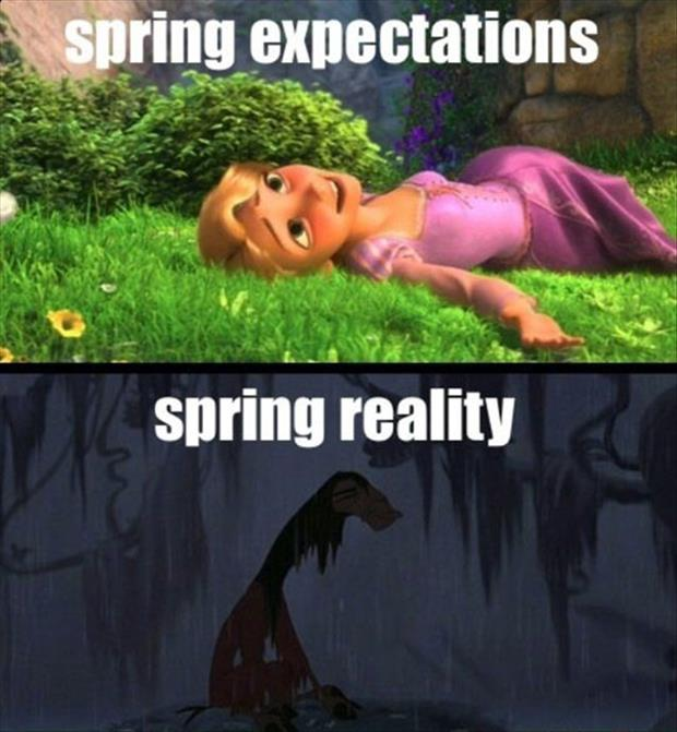 spring expectations