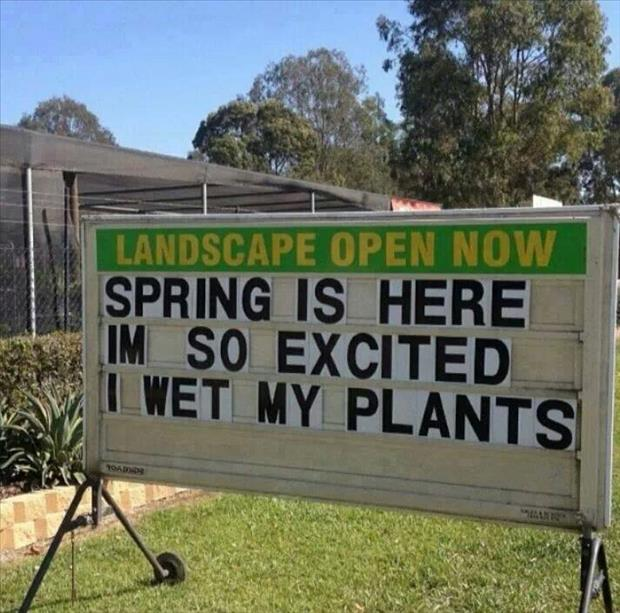 spring is here funny signs