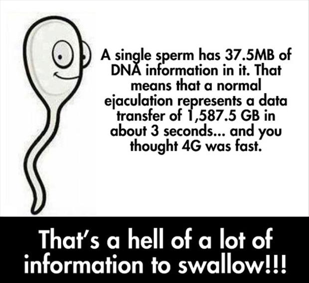 swallowing sperm
