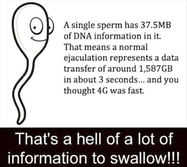 that's a lot of information to swallow sperm