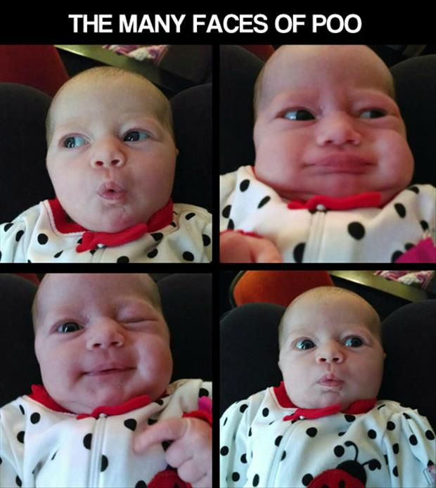 the many faces of poo
