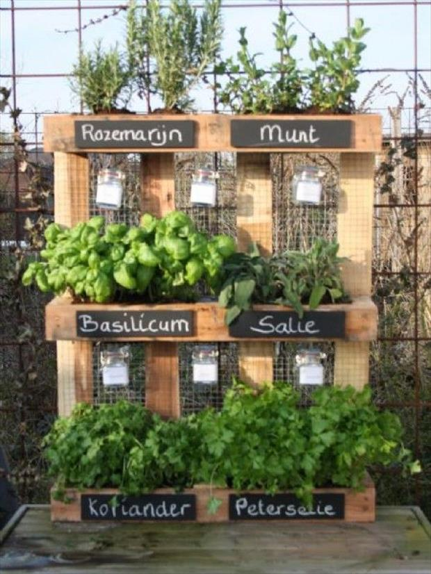 Amazing uses for old pallets 35 pics for Amenagement jardin palette