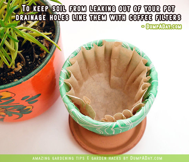 DumpADay Garden Hacks- Coffee filters