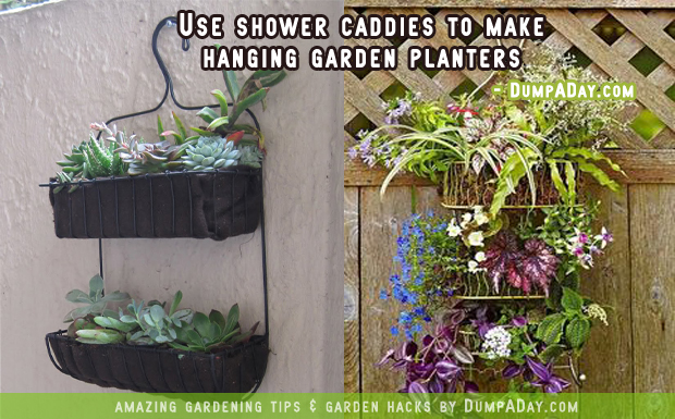 DumpADay Garden Hacks- Shower caddy planters