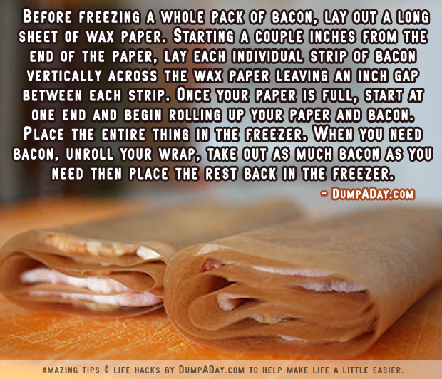 DumpADay Life Hacks- Freezing Bacon
