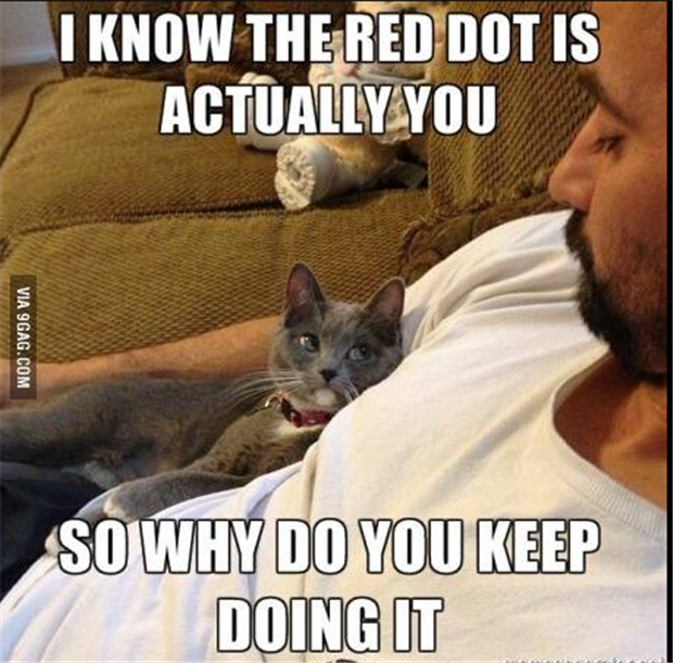 I know the red dot is you