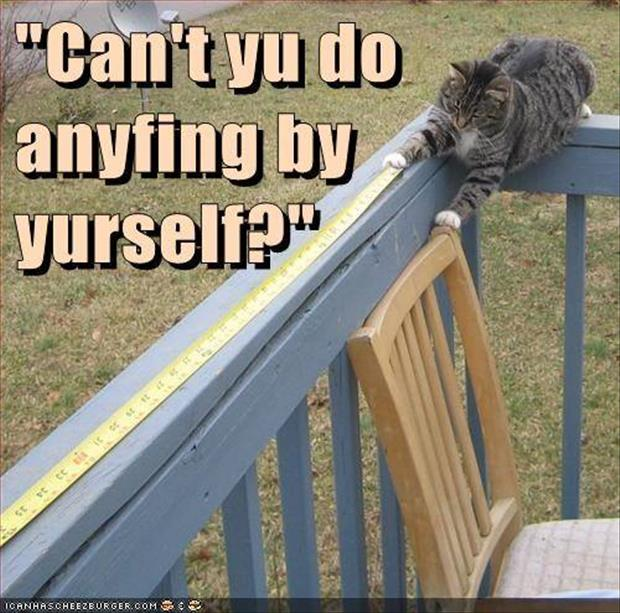 can you do anything by yourself