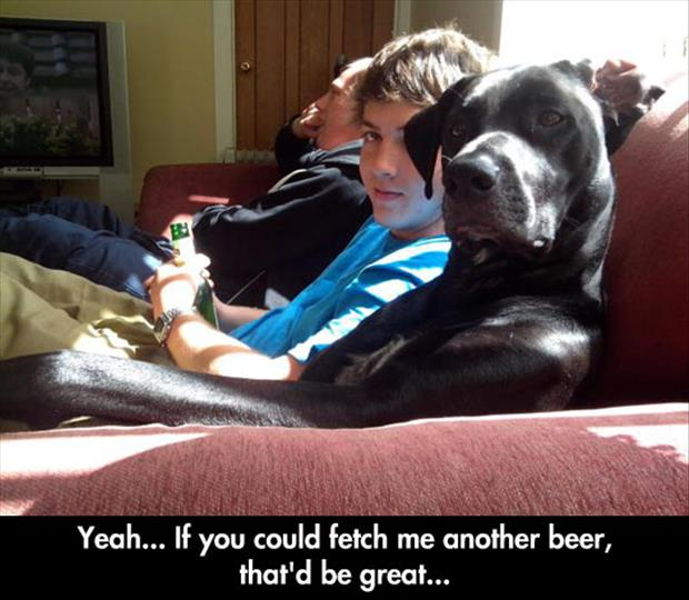 fetch me another beer