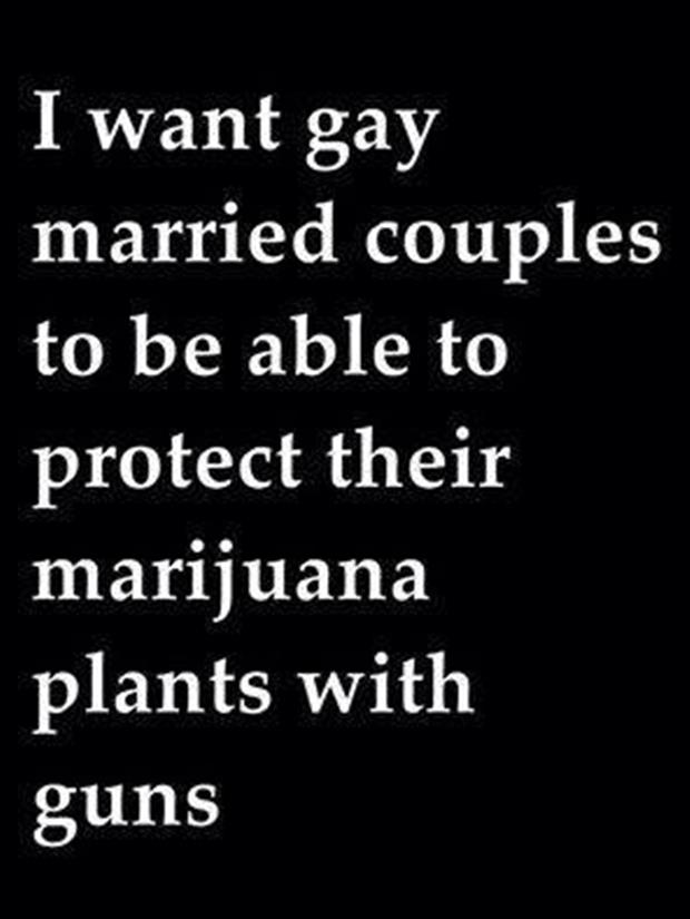 gay couples with guns and weed