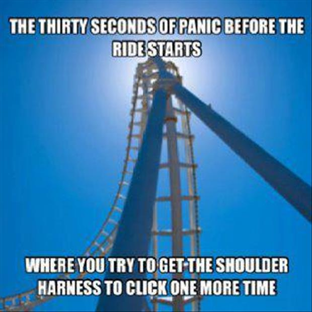 panic on a roller coaster