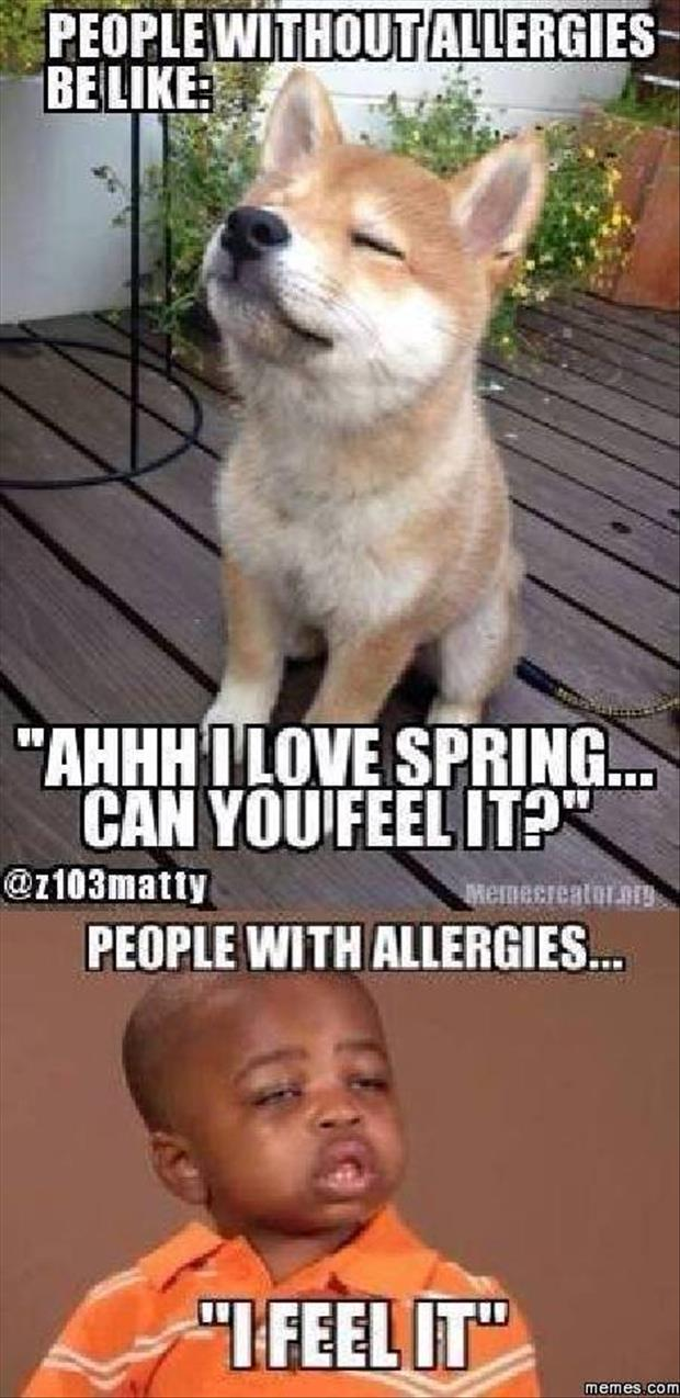 people with allergies love spring