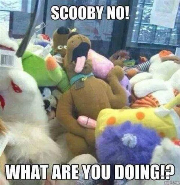 what are you doing scobby doo