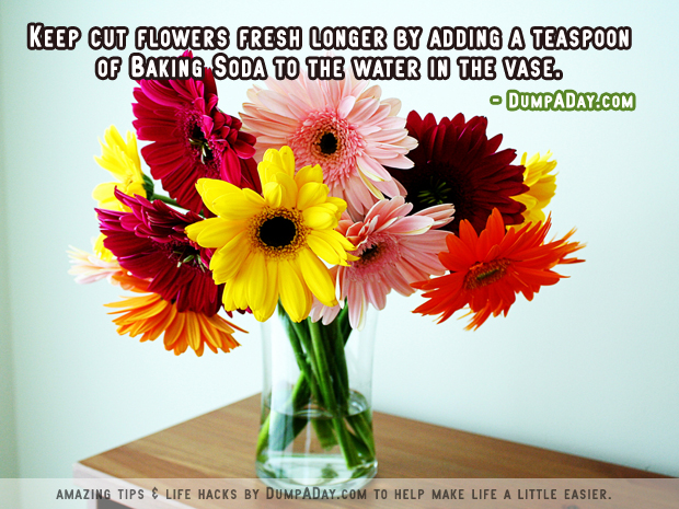 Amazing uses for Baking Soda- Cut flowers