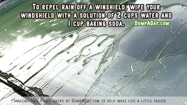 Amazing uses for Baking Soda- Windshield repellent