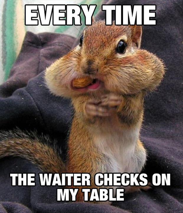 every time the waiter checks on my table