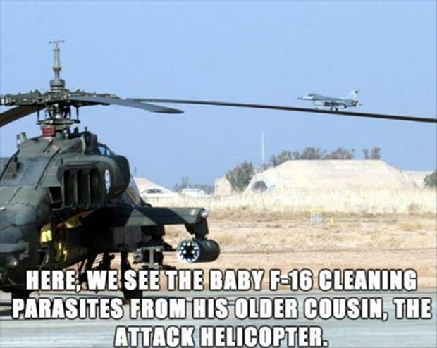 funny military pictures