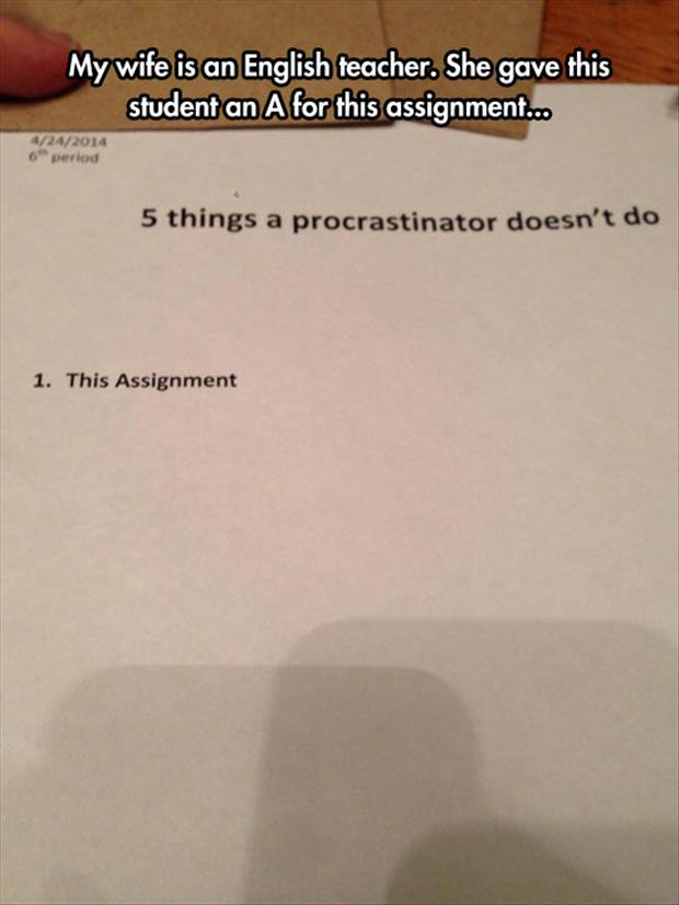 funny student assignments
