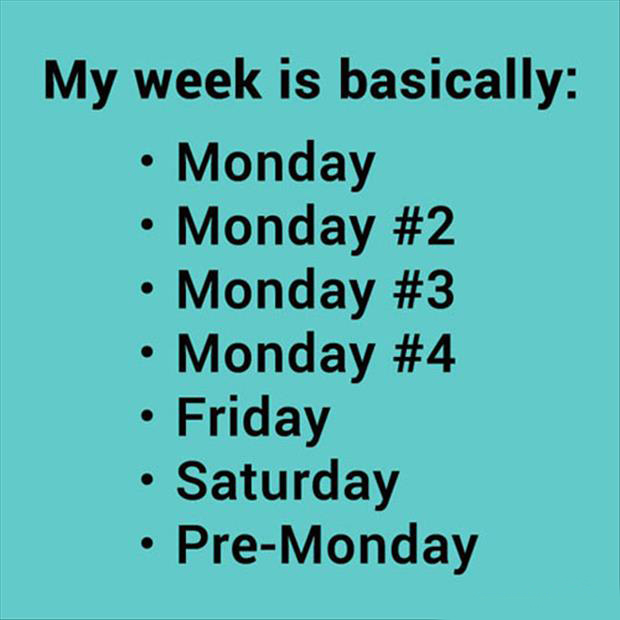 funny weekdays