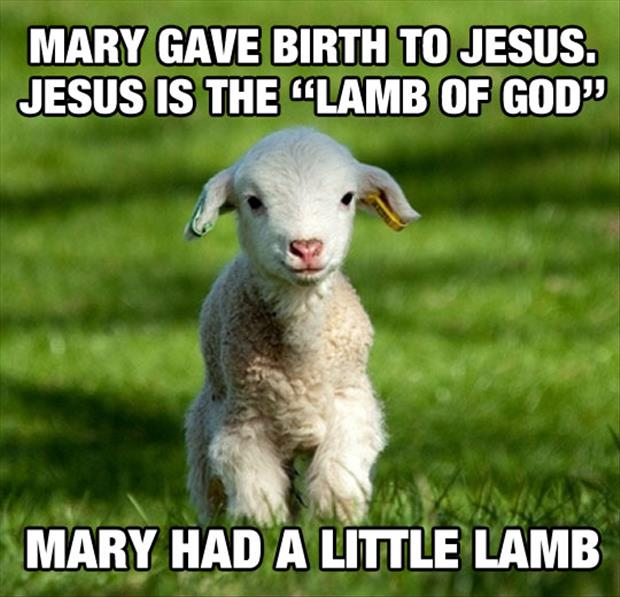 marry had a little lamb