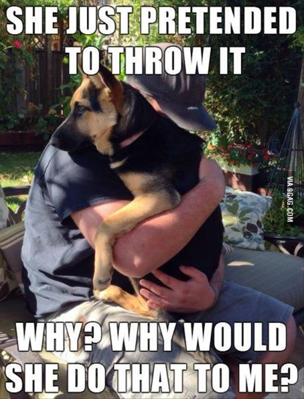 pretend to throw the ball to the dog