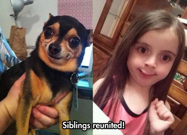 siblings reunited