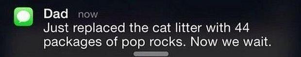 the cat liter with pop rocks