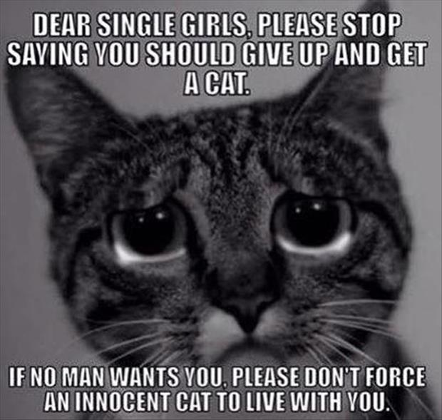 to all the single ladies
