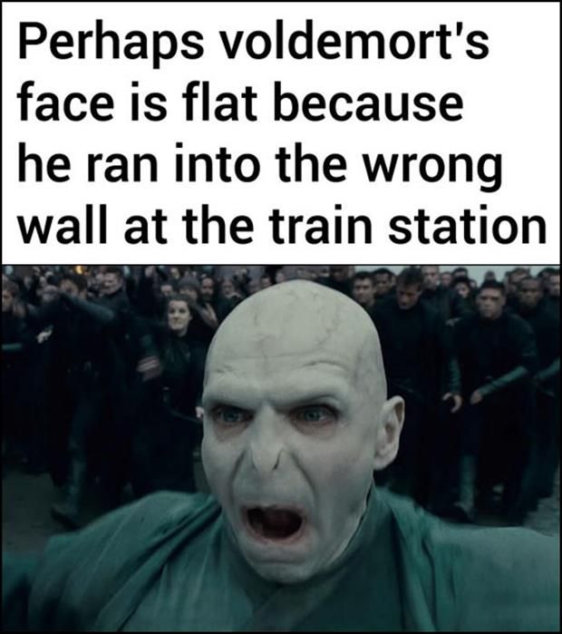 why doesn't voldemort have a nose