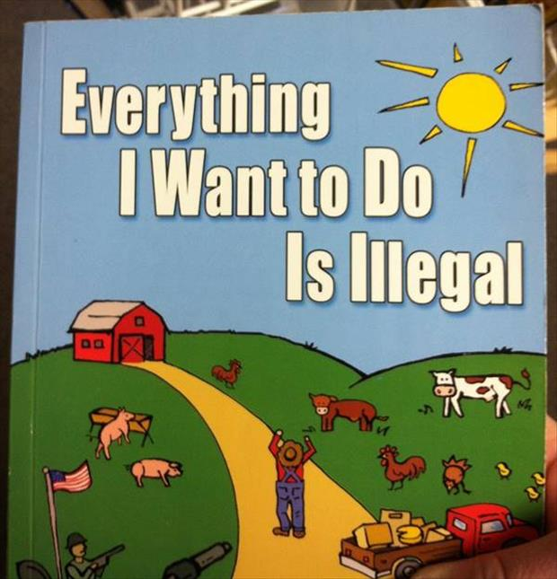 wtf book titles (3)