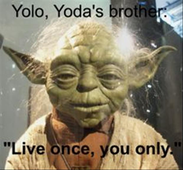yolo yoda's brother