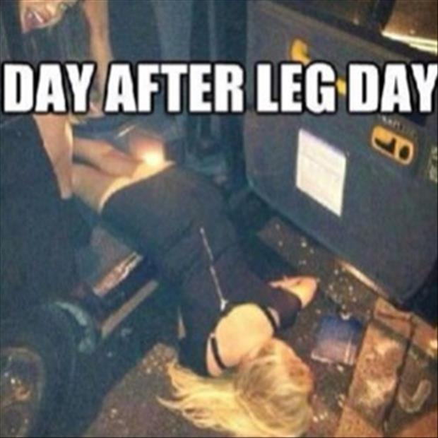 after leg day (3)