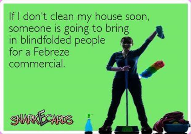 clean my house soon