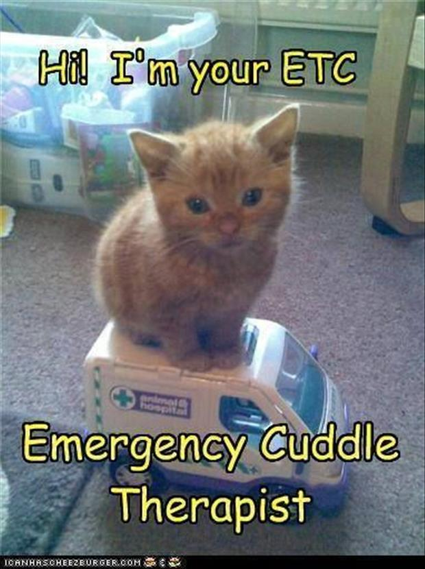 emergency cuddle therapist