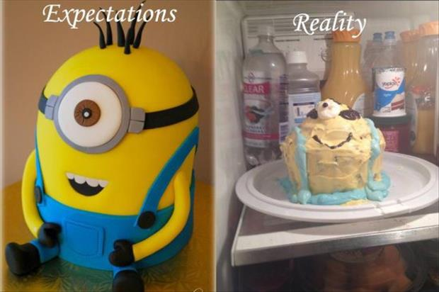 expecations vs reality (22)