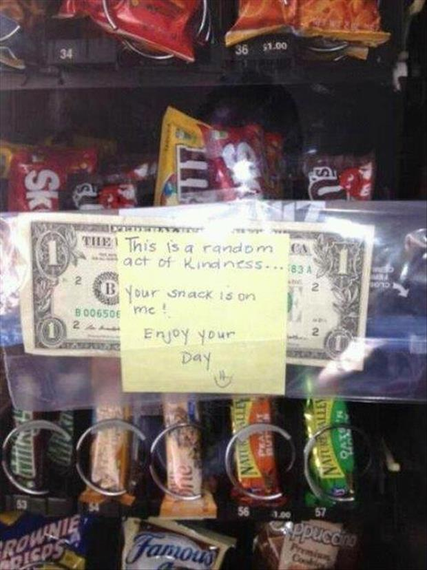 faith in humanity restored (12)