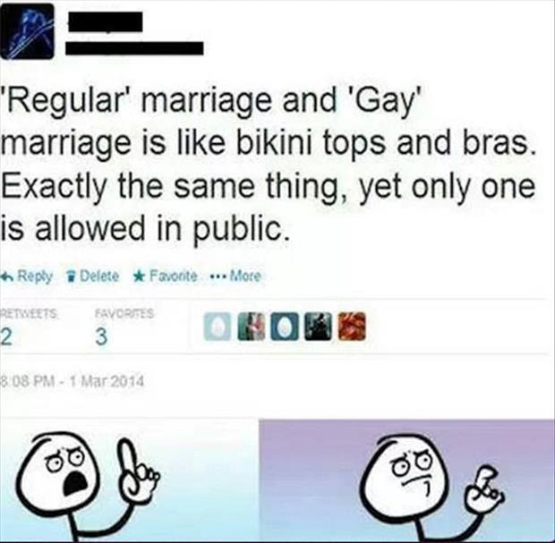 gay marriage and regular marriage
