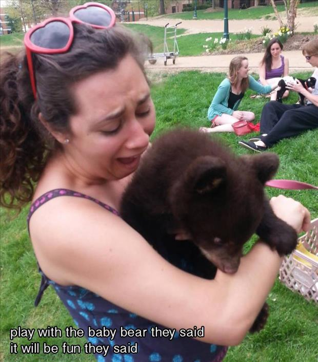 play with a baby bear they said