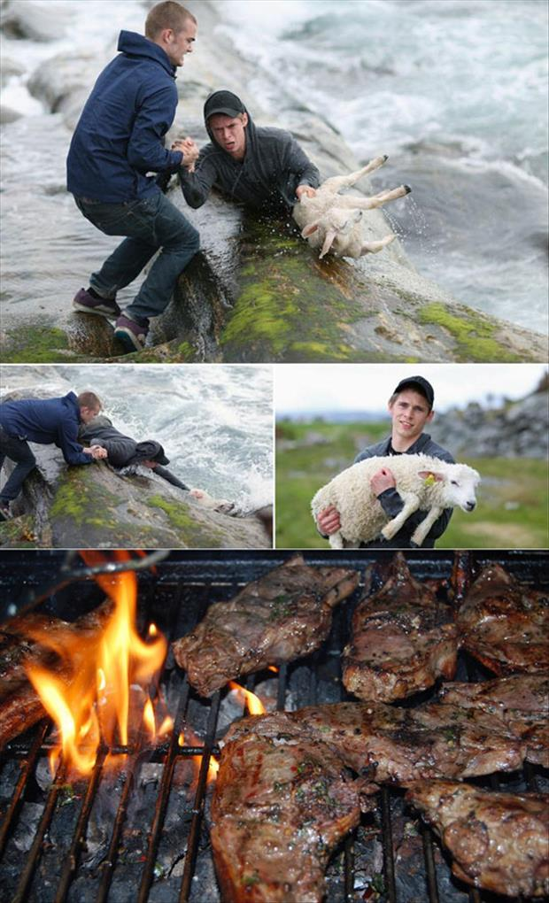 saving and then eating a lamb