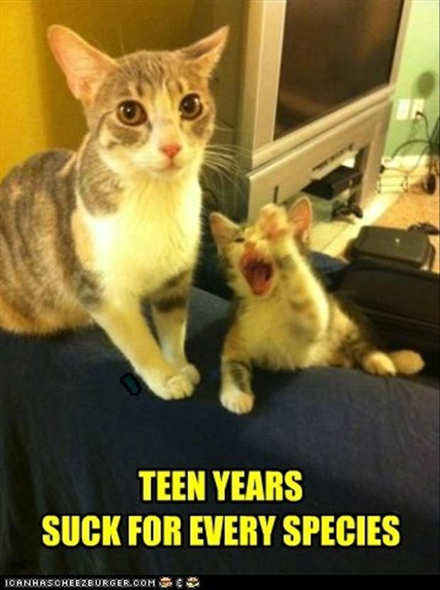 teenage years