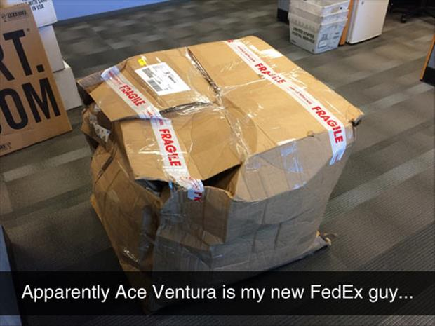 ace ventura is my new fedex driver
