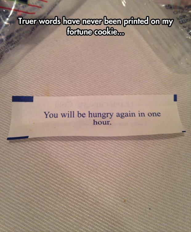 you will be hungry again