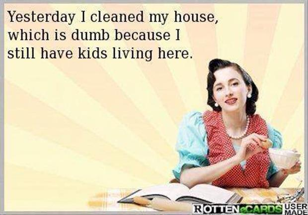 I cleaned my house