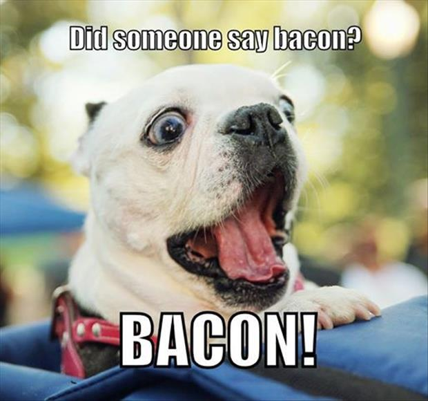 I think someone said bacon