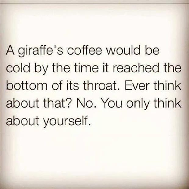 a giraffe's coffee