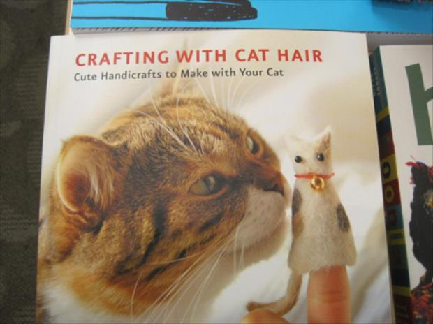 how to craft with cat hair