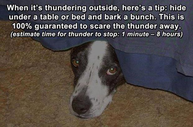how to stop thunder