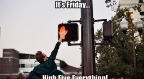 It's Friday.  High Five Everything! – 18 Pics